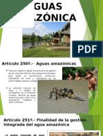 Aguas Amazonicas Parte 1 Vane