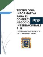 (Trabajo) Tecnología Informatica Para El Comercio y Los Negocios Internacionales II