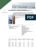 Telescopic Boom Cranes - Lifetime Excellence