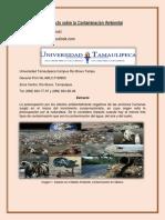 El Impacto sobre la Contaminación Ambiental