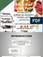 Diapositivas analisis de los alimentos