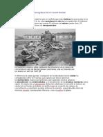 Consecuencias Demográficas de La II Guerra Mundial