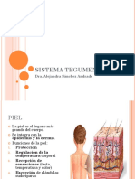00_SISTEMA_TEGUMENTARIO.pdf