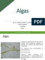 Clase 1 - Algas