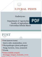 Horticultural Pests