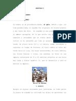 El Algodon.pdf