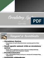 Circulatory System Outline