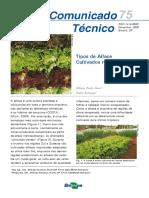 Tipos de Alface.pdf