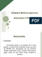 Domínios Morfoclimáticos .pdf