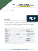 ResumodoBABok2.0.pdf
