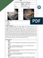 Petrografi #6