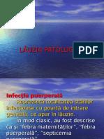 lauzia patologica