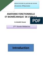 anatomie biomecanique de l'épaule