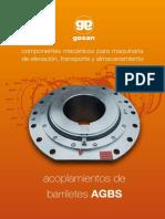 AGBS.pdf