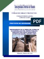 PERFIL HUAURA.pdf