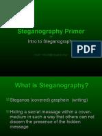 Steganography Primer