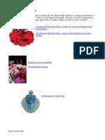 pattydhow2hyperbolictat.pdf