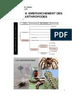 OVA - C8 - Arthropodes PDF.c