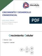 crecimientocraneofacial-140317220014-phpapp01