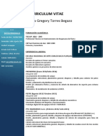 CV HANS TORRES BEGAZO.pdf