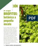 Medina_2014_Invitacion_a_los_briofitos.pdf