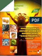 87720062 Produccion y Exportacion de Mermeladas de Aguaymanto y Sauco