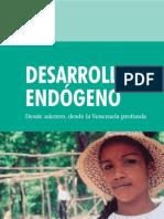 Desarrollo Endógeno 1