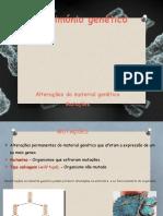 1_Mutações_ causas.pptx