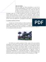 La Palma Aceitera en El Perú