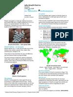 Airsoft in Australia - Factsheet.pdf