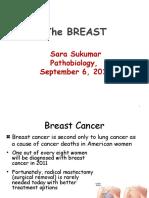 Breast Cancer Sukumar
