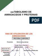 3a Metabolismo de Aminoacidos y Proteinas