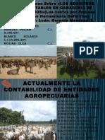 Resumen Registros Contables en Ganaderia
