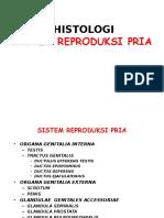 Histo Pria Poin 2