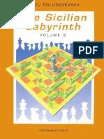 Polugayevsky, L. - Thw sicilian Labyrinth Vol.2 - Pergamon 1991.pdf