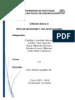 Incision y Sus App (1)