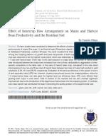 4 Effect of Intercrop Row Arrangement