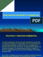 EVALUACION IMPACTO AMBIENTAL