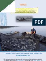 Pesca en El Perú