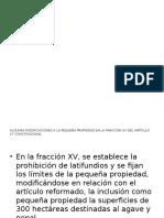 Propiedad Agricola 2