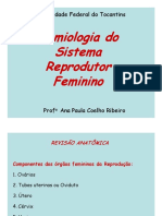 Semio Reprodutor FEMININO