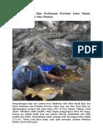 Dinas Kelautan Dan Perikanan Provinsi Jawa Timur