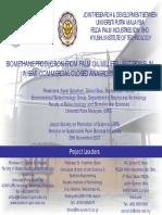 Alawi JSPS Seminar 2007.pdf