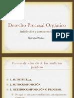 Derecho Procesal Orgánico (1º Semestre) (1) (1)