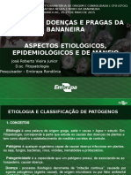 curso doenças da bananeira CFO 2016 IDARON - EDITADO.pptx