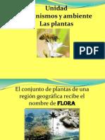 organismos y ambiente.pptx