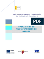 93227-Guia Cdp Operaciones de Transformacion de Caucho (1)