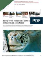 41 Especies Sumarán a Lista de Peligro de Extinción en Honduras - Diario La Prensa