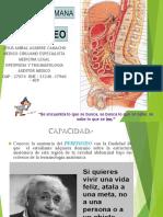 Clase Peritoneo Dr Aguirre
