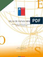 atlas_faenas Anfo_Atacama.pdf